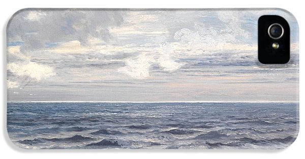 Silver Sea IPhone 5 Case by Henry Moore