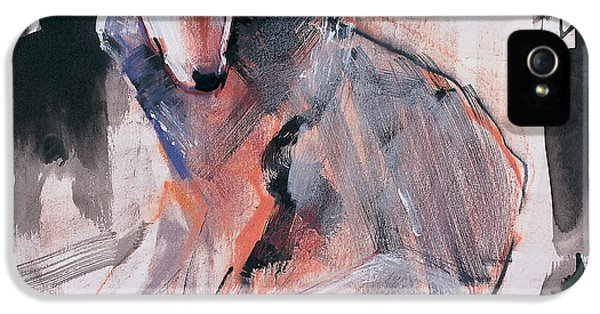 Wolves iPhone 5 Case - Sitting Wolf by Mark Adlington