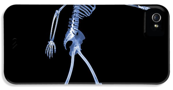 Human Body iPhone 5 Cases - Skeleton Playing Football iPhone 5 Case by D. Roberts