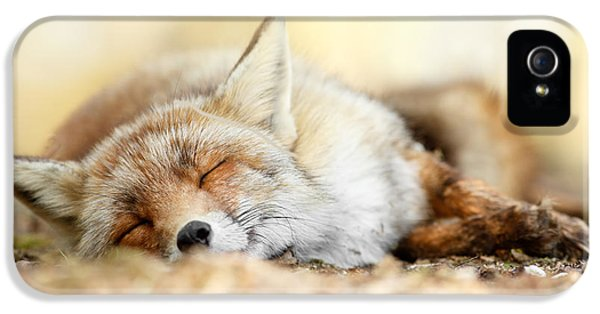 Sleeping Beauty -red Fox In Rest IPhone 5 Case by Roeselien Raimond