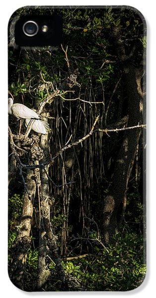Ibis iPhone 5 Case - Sleeping Quarters by Marvin Spates