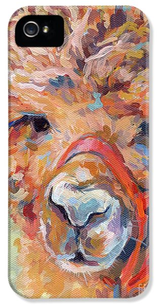 Llama iPhone 5 Case - Snickers by Kimberly Santini