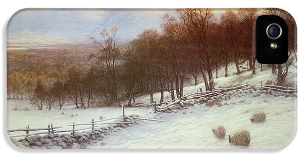 Snow Covered Fields With Sheep IPhone 5 Case