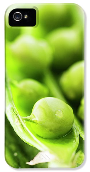 Snow Peas Or Green Peas Seeds IPhone 5 Case by Vishwanath Bhat