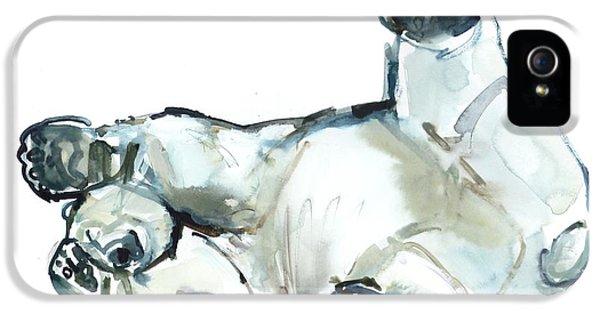 Bear iPhone 5 Case - Snow Rub by Mark Adlington