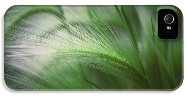 Soft Grass IPhone 5 Case by Scott Norris