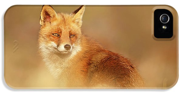 Softfox Series - Red Fox Blending In IPhone 5 Case