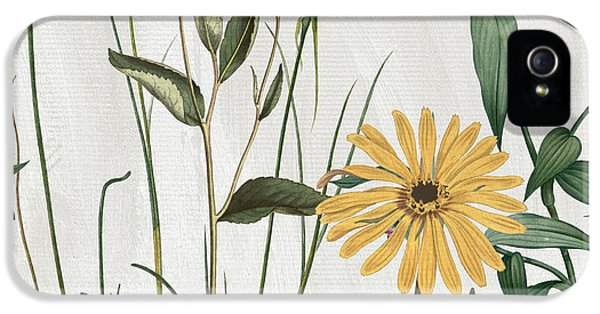 Paris iPhone 5 Case - Softly Crocus And Daisy by Mindy Sommers
