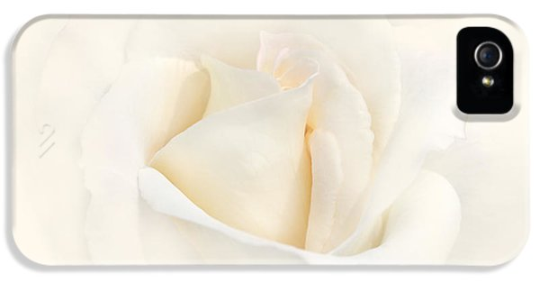 Softness Of An Ivory Rose Flower IPhone 5 Case by Jennie Marie Schell