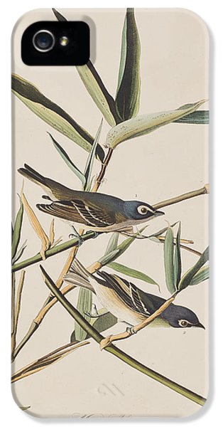 Solitary Flycatcher Or Vireo IPhone 5 Case by John James Audubon
