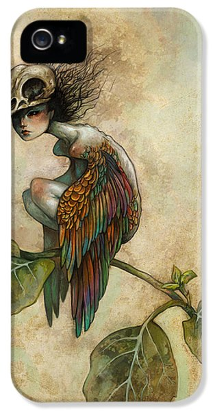 Soul Of A Bird IPhone 5 Case by Caroline Jamhour