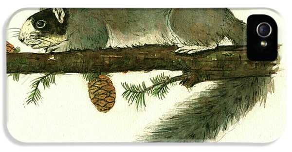 Squirrel iPhone 5 Case - Southern Fox Squirrel  by Juan Bosco