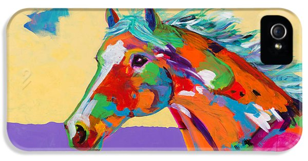 Spirit Of The Plains IPhone 5 Case by Tracy Miller