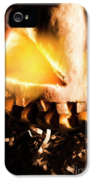Spooky Jack-o-lantern In Darkness IPhone 5 / 5s Case by Jorgo Photography - Wall Art Gallery