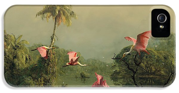 Spoonbills In The Mist IPhone 5 Case by Spadecaller