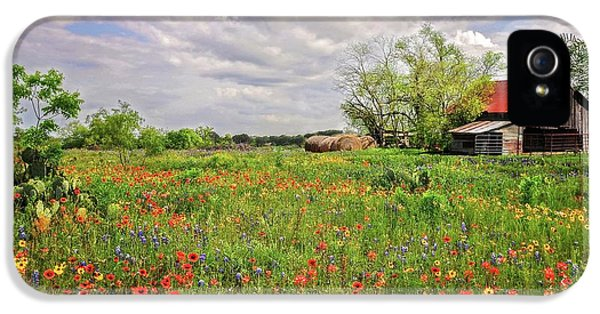 Spring Beauty On The Farm IPhone 5 Case