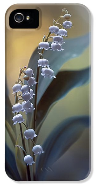 Lily iPhone 5 Case - White Pearls by Magda  Bognar