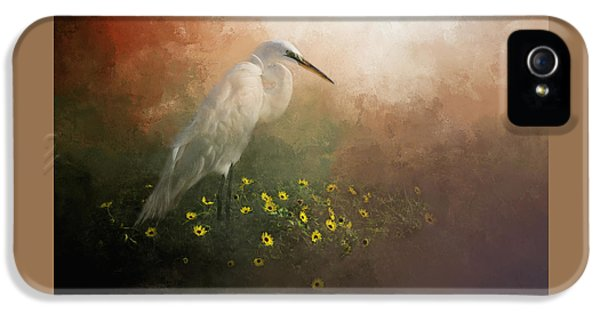 Spring Is Here IPhone 5 Case
