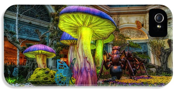 Spring Mushrooms IPhone 5 Case by Stephen Campbell