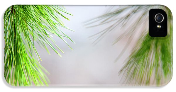 IPhone 5 Case featuring the photograph Spring Pine Abstract by Christina Rollo
