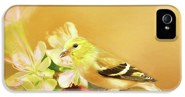 Spring Song Bird IPhone 5 Case by Darren Fisher