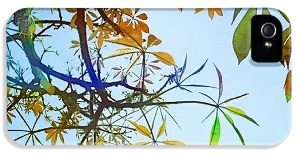 #spring #tree #leaves With #watercolor IPhone 5 Case