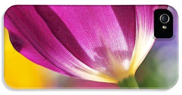 Spring Tulip IPhone 5 Case