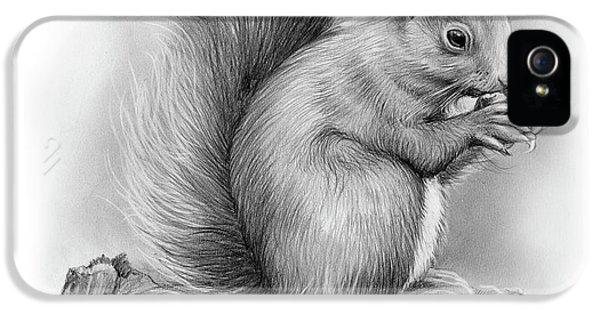 Squirrel iPhone 5 Case - Squirrel by Greg Joens