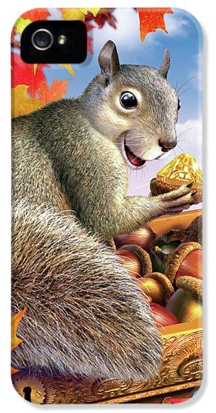 Squirrel iPhone 5 Case - Squirrel Treasure by Jerry LoFaro
