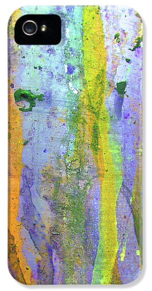 Spectrum iPhone 5 Cases - Stains of Paint iPhone 5 Case by Carlos Caetano