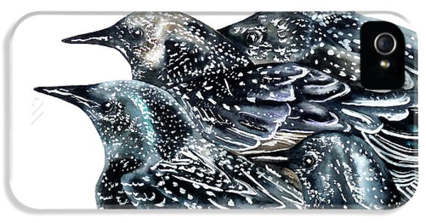 Starlings IPhone 5 Case by Marie Burke