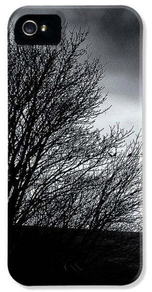 Starlings Roost IPhone 5 Case by Philip Openshaw