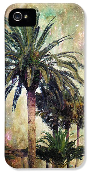 Palm Tree iPhone 5 Case - Starry Evening In St. Augustine by Jan Amiss Photography