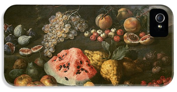 Still Life IPhone 5 Case by Bartolomeo Bimbi