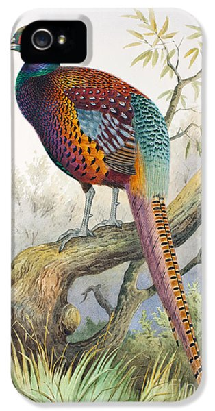 Strauchs Pheasant IPhone 5 Case