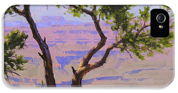 Grand Canyon iPhone 5 Case - Study For Canyon Portal by Cody DeLong