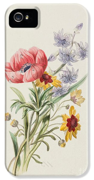 Study Of Wild Flowers IPhone 5 Case by English School