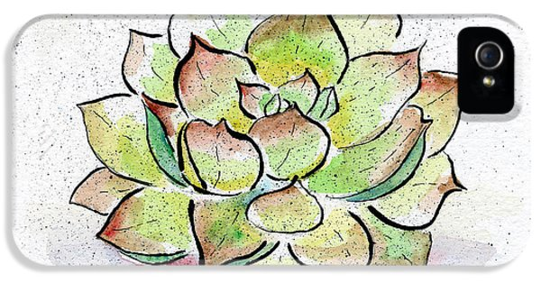 Succulent IPhone 5 Case by Diane Thornton