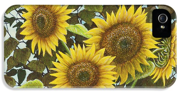 Summer Quintet IPhone 5 / 5s Case by Marc Dmytryshyn
