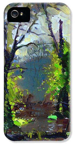 Backlight iPhone 5 Cases - Sun ater Rain iPhone 5 Case by Ylli Haruni