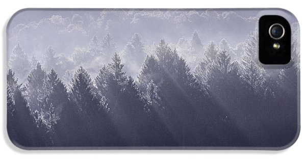 Sunbeams IPhone 5 Case