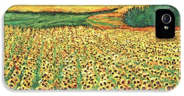 Sunflower iPhone 5 Case - Sunburst by Johnathan Harris