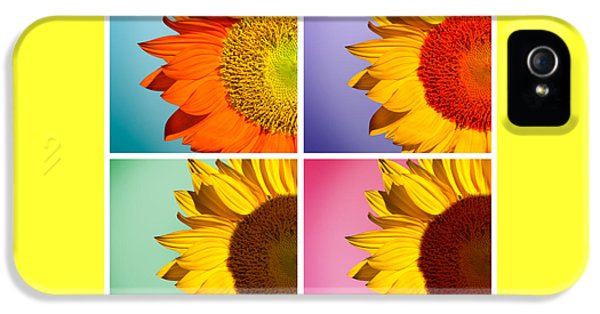 Sunflowers Collage IPhone 5 Case by Mark Ashkenazi