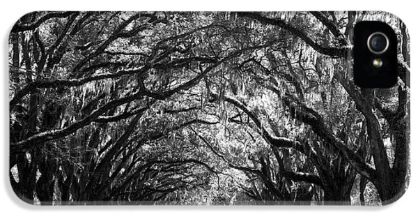 White iPhone 5 Case - Sunny Southern Day - Black And White by Carol Groenen