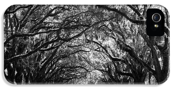Sunny Southern Day - Black And White IPhone 5 Case by Carol Groenen