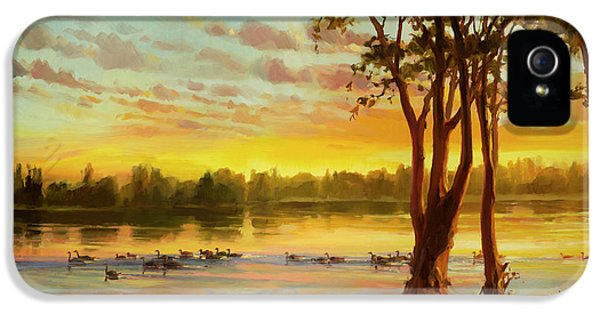 Geese iPhone 5 Case - Sunrise On The Columbia by Steve Henderson
