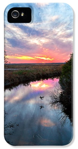 Sunset Over The Marsh IPhone 5 Case by Christopher Holmes