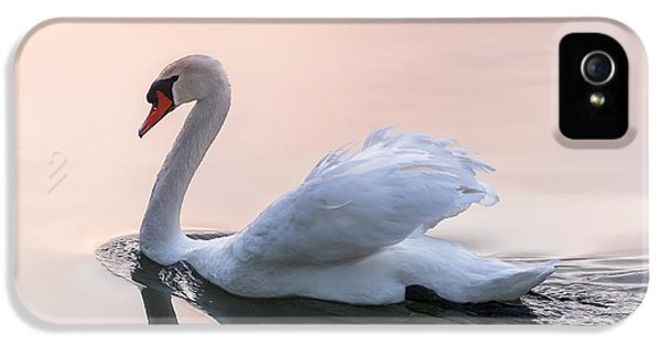 Sunset Swan IPhone 5 / 5s Case by Elena Elisseeva