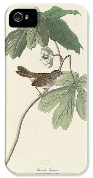Swamp Sparrow IPhone 5 Case by Rob Dreyer
