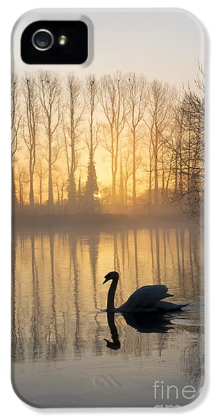 Swan Lake IPhone 5 Case by Tim Gainey